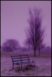 Mid Winter by gordonrae