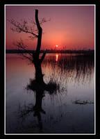 MARCH SUNSET by gordonrae