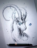 Capricorn by JoJoesArt