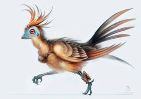 Messenger Cuckoo by Landylachs