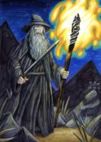 Gandalf the Grey by BrokenHAX