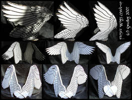 Fursuit Wings Mock-up by swandog