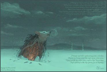 A Winter's Repose by swandog