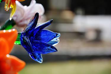 Glass Bloom 1 by nazzara