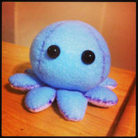 Baby octopus by Nikky81