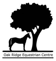 Logo by IndieSkye