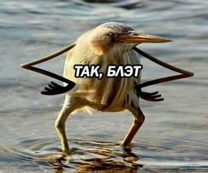 tak bleat by AntonioLime
