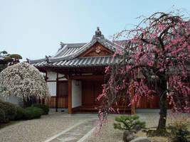 garden by harakirimushi