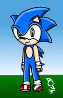 Sonic The Hedgehog (Photoshop Test) by TheRealStickBlue