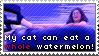 Watermelon Cat Stamp by Lukrietz