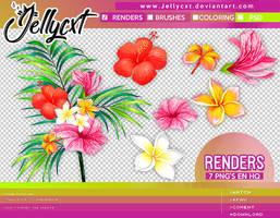 #002   Renders   by jellycxt