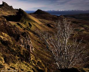 Lighting the landscape by LordLJCornellPhotos