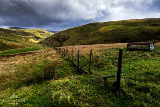 The grass is always greener by LordLJCornellPhotos