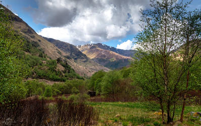 In the heart of the glen. by LordLJCornellPhotos