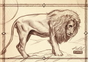 The Lion by kaio89
