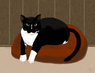 The Original Grumpy Cat by Nek0