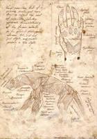 Vathyen Muscle by sturstein