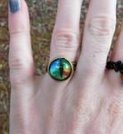 Cat's Eye Ring by FeynaSkydancer