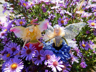 Fairies in the Flowers by FeynaSkydancer