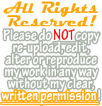 Simple All Rights Reserved! Banner (Orange) by Drache-Lehre