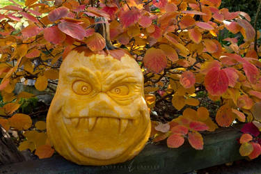 Halloween 2018 Pumpkin 01 - Spud by Laffler