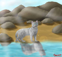 Jayfeather by Meow-mer