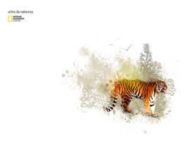 NatGeo - Arts of nature by harisson
