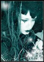 Dreamer's secret by pineka