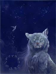 Under the Stars by kalamu