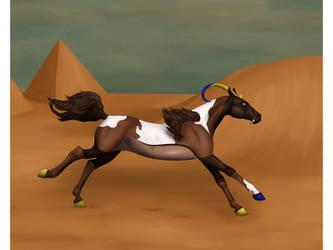 Desert Run by Maddybr