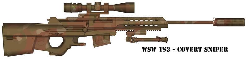 WSW TS3 by RoShinAU