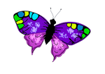 Color de mariposa by Bluuberwolf