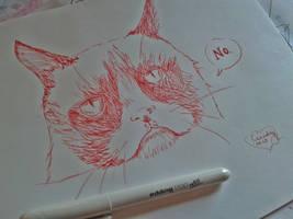 Grumpy cat by Cindy-R