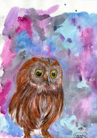 Night Time Owl by Cindy-R