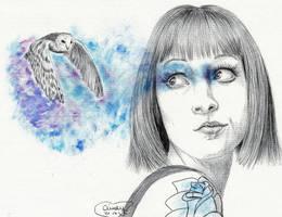 Barn Owl by Cindy-R