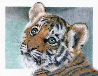 Ballpoint Baby Tiger by Cindy-R