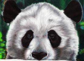 Ballpoint Pen Panda (WIP) by Cindy-R