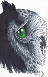 Green Eye Owl by Cindy-R
