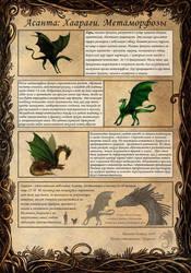 Haarag evolution by hontor