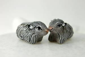 Guinea pigs by hontor