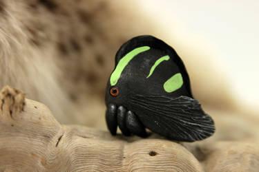 Treehopper Membracis lunata by hontor