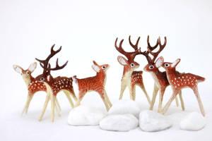 Deers by hontor