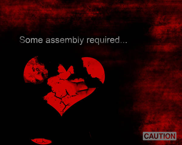 Some Assembly Required -EDIT- by Queen---of---Spades