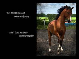 Don't Break My Heart ..WP.. by Queen---of---Spades