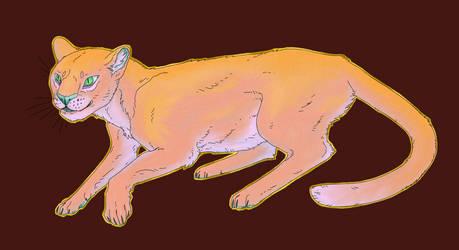 Sunrise Cat by Naburius