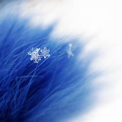 A Winter's Tale II by FeliDae84