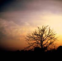 Set my eyes on the sun. by ziGGy-M