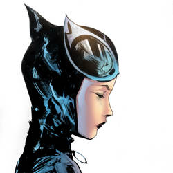 Catwoman by Brianskipper