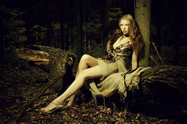 Fairy by 0mela