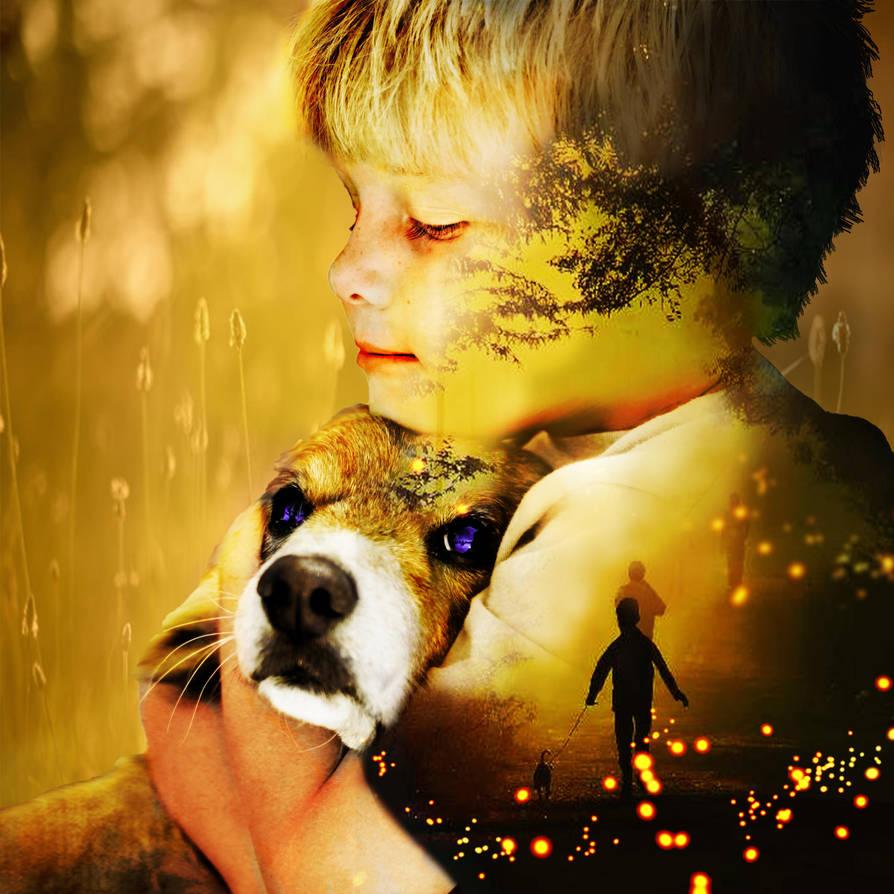 A Dog's Purpose by LonDiamond